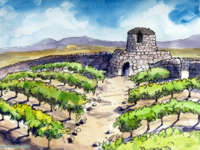 20-parable-vineyard